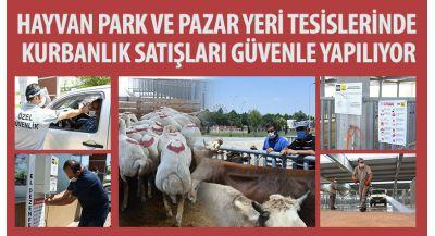 Hayvan Park ve Pazar Yeri Tesislerinde Kurbanlık Satışları Güvenle Yapılıyor