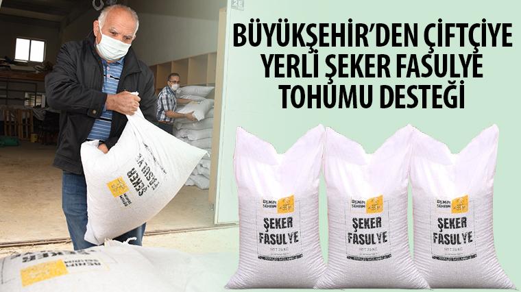 Büyükşehir'den Çiftçiye Yerli Şeker Fasulye Tohumu Desteği